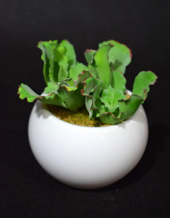 Sztuczny sukulent z falowanymi liśćmi 11 cm
