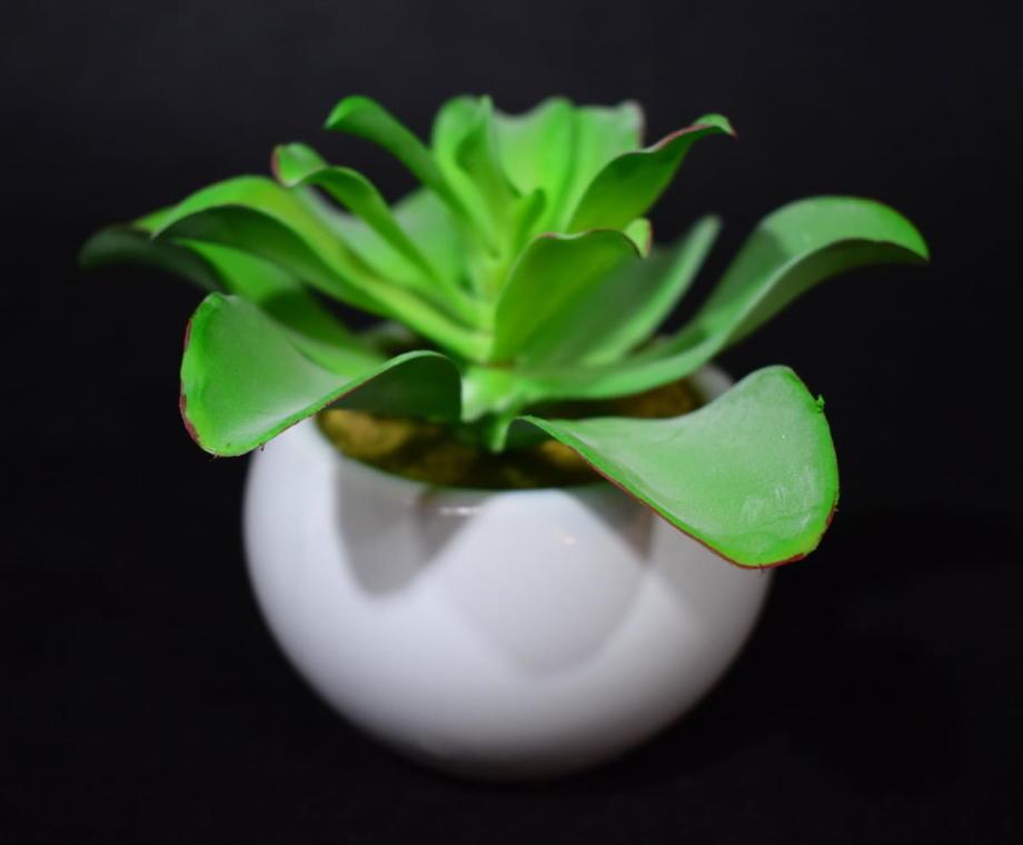 Sztuczny sukulent w białej ceramicznej osłonce