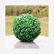 Kula bukszpanowa 20 cm