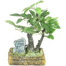Drzewko bonsai na skalnej podstawie w kolorze biało-zielonym